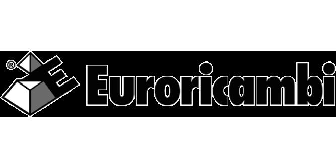 Euroricambi - Peças para Diferencial e Comando Final